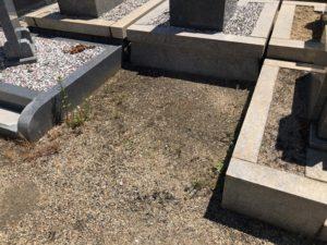 東大阪市楠根墓地の区画