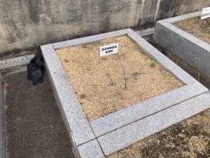 荒本春宮墓地の空き区画