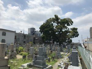 二大字共有墓地(豊中市)の空き