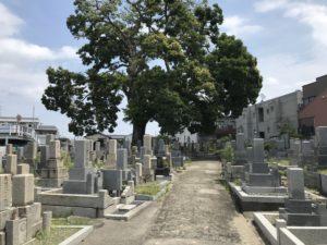 二大字共有墓地(豊中市)の風景