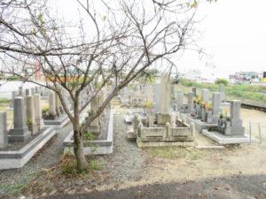 戸津区墓地4(八幡市)