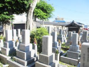 堀溝新家墓地12(寝屋川市)