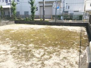 真福寺野々壱組弐組共同墓地4(摂津市)