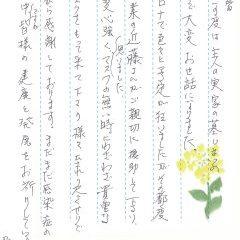 神戸市立西神墓園でお墓じまいをさせていただきました(川本様)