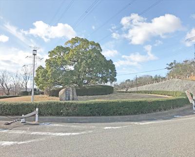 長尾山霊園で墓石の彫刻