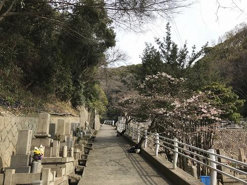 神戸市追谷墓園で墓石の彫刻