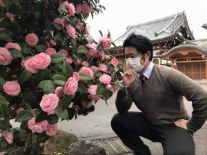 宝泉寺(宝塚市)のオトメツバキと井嶋。.21.3.7