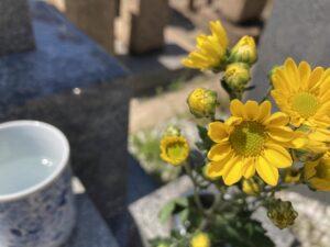 21.4.11_高松墓地(神戸市兵庫区)のお供えのお花が綺麗です。