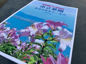 令和3年度神戸市立墓園 使用者募集が始まるので舞子墓園に下見に来ました。